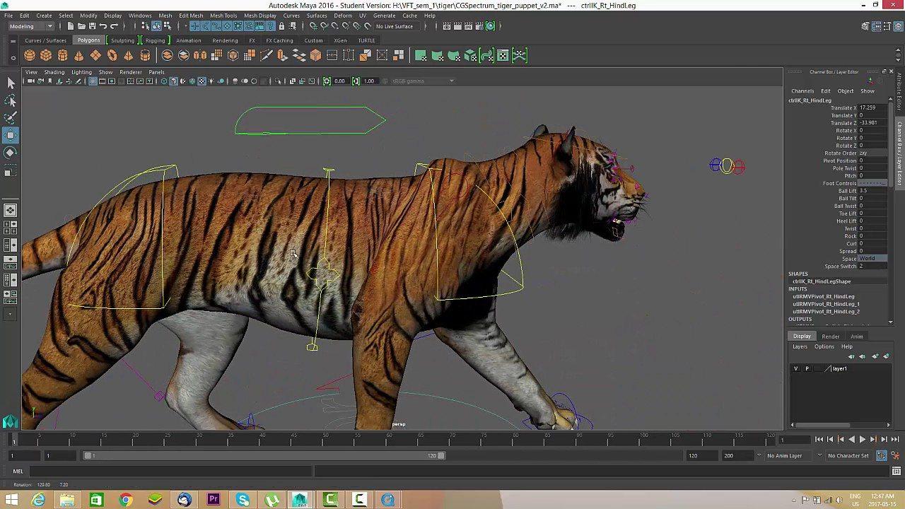 Tutorial: Como animar una caminata de un Tigre | Notodoanimacion.es ...