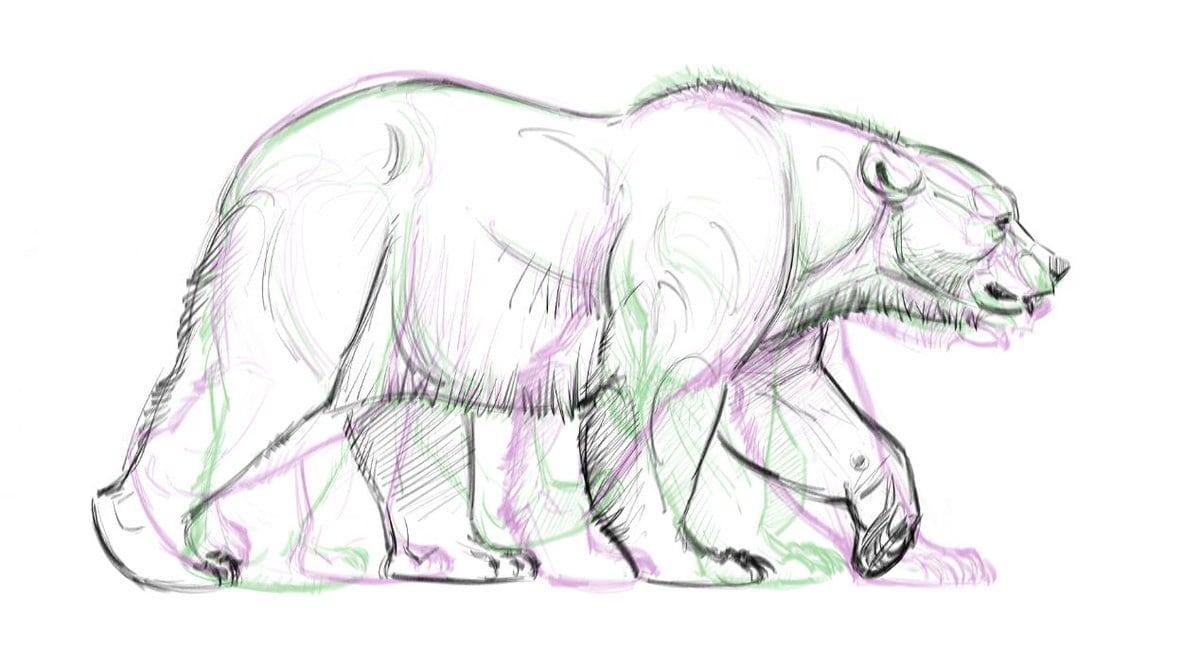 Como Animar un osos - ciclos de caminar - Tutoriales de Animación & Diseño de Personajes - Osos de Aaron Blaise