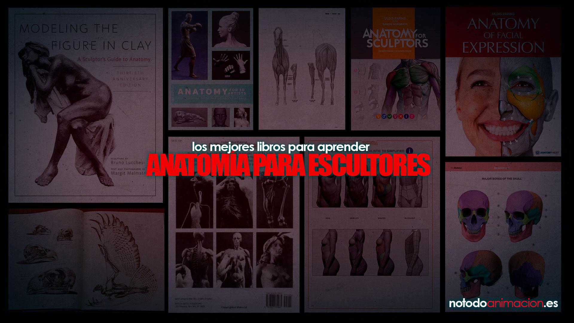 libros anatomia para escultura