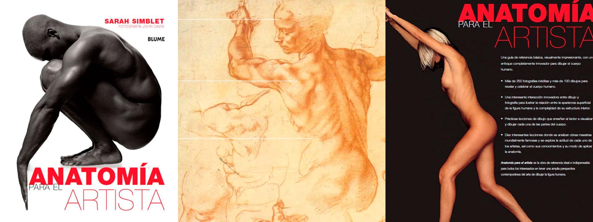 libro dibujo anatomía